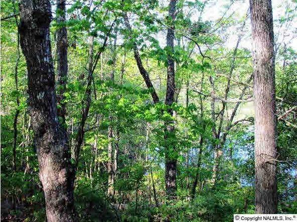 102 County Rd. 945, Mentone, AL 35984 Photo 7