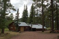Home for sale: 8 County Rd. 2036, Alpine, AZ 85920