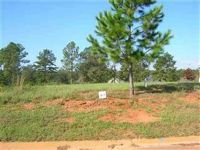 Home for sale: Lot A-7 Camden Way, Hawkinsville, GA 31036