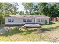 Home for sale: 153 Co Rd. 209, Crane Hill, AL 35053