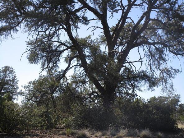 13818 N. Grey Bears Trail, Prescott, AZ 86305 Photo 5