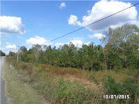 Home for sale: 0 Hwy. 43 S., Saint Joseph, TN 38481