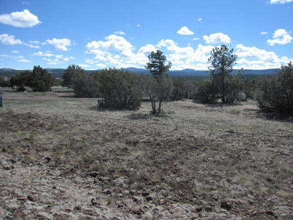 40.88 Acre Of 106-36-034-I, Vernon, AZ 85940 Photo 13