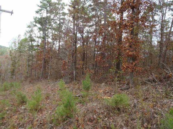 108 Buckthorn, Mountain Pine, AR 71956 Photo 4