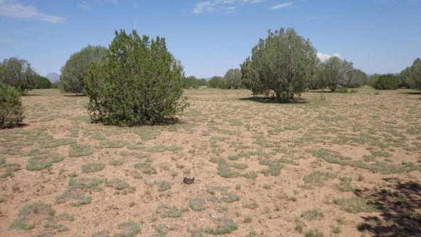 261 Juniperwood Ranch Lot 261, Ash Fork, AZ 86320 Photo 8