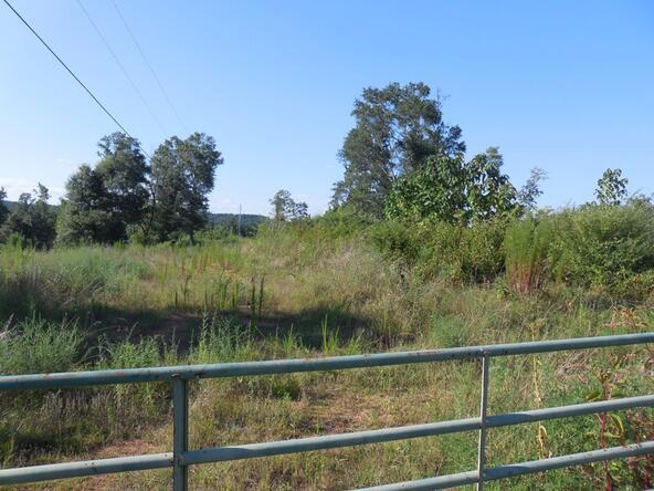 00 County Rd. 571, Hanceville, AL 35077 Photo 8