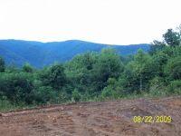 Home for sale: 279 Dry Branch Rd., Elizabethton, TN 37643