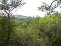 Home for sale: 0 Redondo Rd. @ Cebolla Loop, Jemez Springs, NM 87025