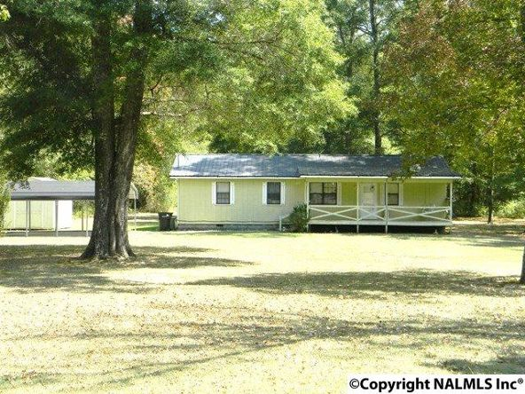 668 Jones Chapel Rd., Piedmont, AL 36272 Photo 6