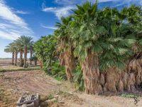 Home for sale: 6475 W. County 11 St., Yuma, AZ 85364