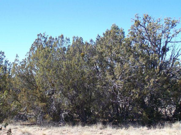 27145 W. Fort Rock Rd., Seligman, AZ 86337 Photo 4