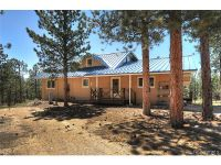 Home for sale: 16305 County Rd. 325, Buena Vista, CO 81211