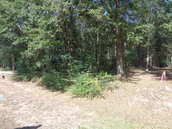 15.6+-Ac Johnny Murphy Rd., Dothan, AL 36301 Photo 6