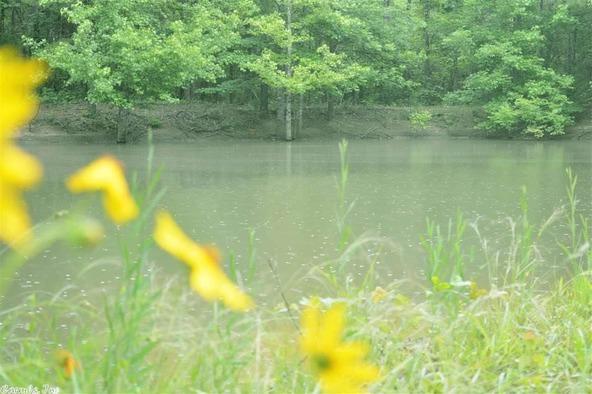 137 E. Cadron Ridge Rd., Greenbrier, AR 72058 Photo 44