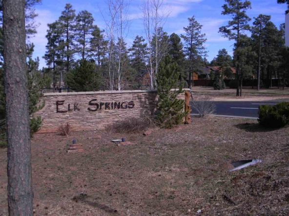5457 E. S. Elk Springs, Lakeside, AZ 85929 Photo 2