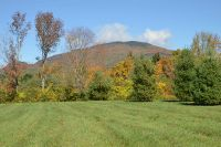 Home for sale: Lot 1 Lewis Bend, Manchester, VT 05255