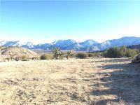Home for sale: 0 Vac/Longview Rd./Vic 126 Ste, Juniper Hills, CA 93543