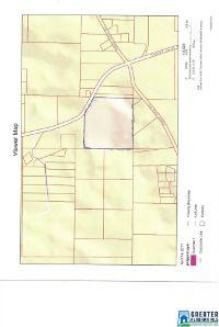 Home for sale: 300 Wolf Pond Rd., Talladega, AL 35160