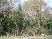 Home for sale: 3.75 Ac Herrington St., Glennville, GA 30427