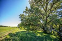 Home for sale: Tbd County Rd. 171, Sidney, TX 76442