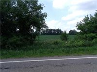 """Home for sale: 10 Milford Rd. Parcel """"F"""" Deep Walkout, Holly, MI 48442"""