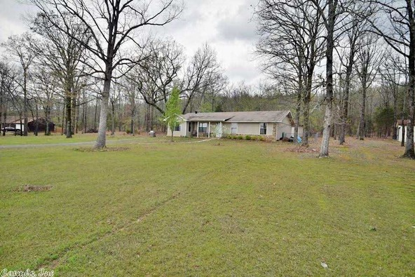 100 Roden Mill Rd., Conway, AR 72032 Photo 6