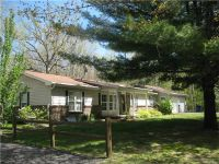 Home for sale: 3835 Jones, Beaverton, MI 48612