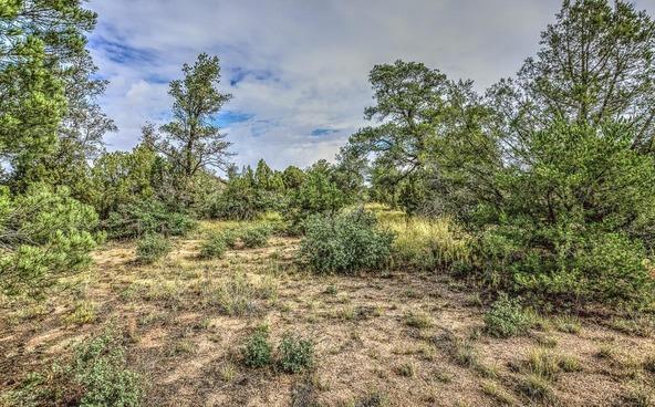 4795 Three Forks Rd., Prescott, AZ 86305 Photo 12