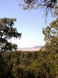Home for sale: 54867 N. Presidio Parkway, Seligman, AZ 86337
