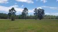 Home for sale: 465 Lindsay Ln., Crescent City, FL 32112
