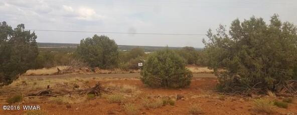 2075 Parker Ranch Rd., Show Low, AZ 85901 Photo 22