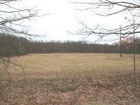 Home for sale: 15 Acres Coolidge, Harrison, MI 48625
