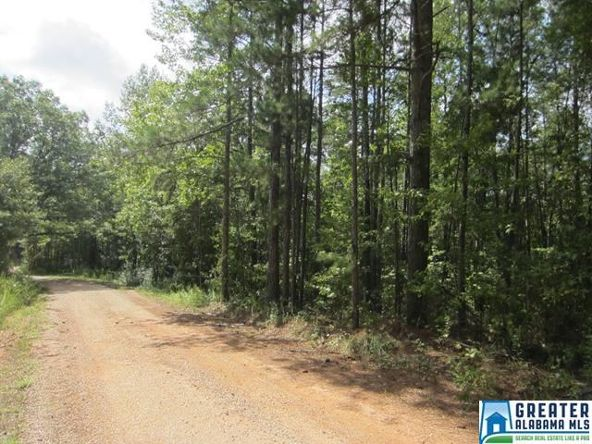 3.05 Acres Thomas Ln., Ashland, AL 36251 Photo 2
