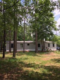 Home for sale: 107 Horsetail Ave., Middleburg, FL 32068