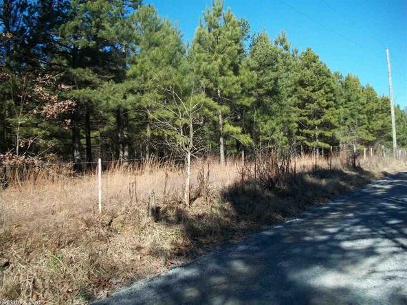 399 Dogwood Trail, Quitman, AR 72131 Photo 5