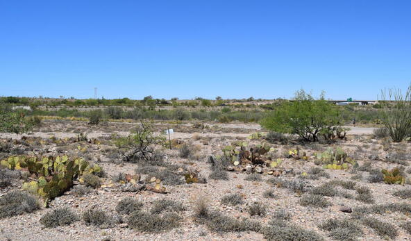 14449 E. Sands Ranch, Vail, AZ 85641 Photo 4