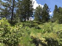 Home for sale: Tbd Aspen Ridge Lots 18 & 19, Boise, ID 83716