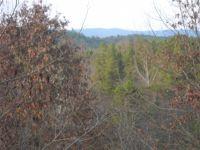 Home for sale: 0 Farmer Jon's. Trail, Bostic, NC 28018