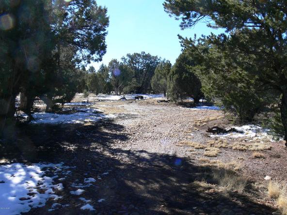 3557 Juniper Break Trail, Overgaard, AZ 85933 Photo 6