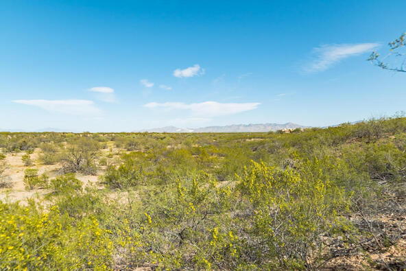 1049 Josephine Saddle Pl., Green Valley, AZ 85614 Photo 7