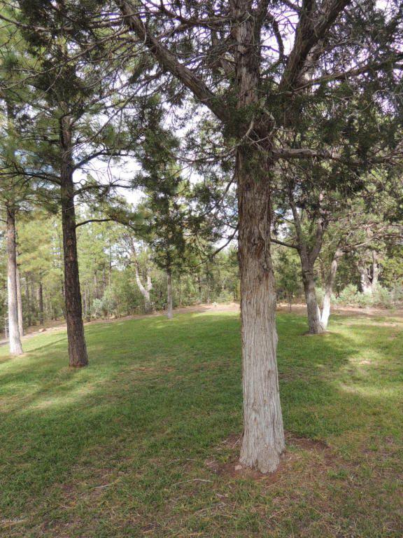 1911 S. Sierra Park Trail, Show Low, AZ 85901 Photo 47