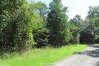 Home for sale: 3.5 Acres Ravine Rd. & Mocking Bird Ln., Tumbling Shoals, AR 72581