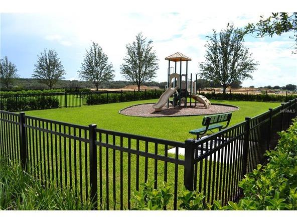 8012 Jeremy Joseph Alley, Winter Garden, FL 34787 Photo 7