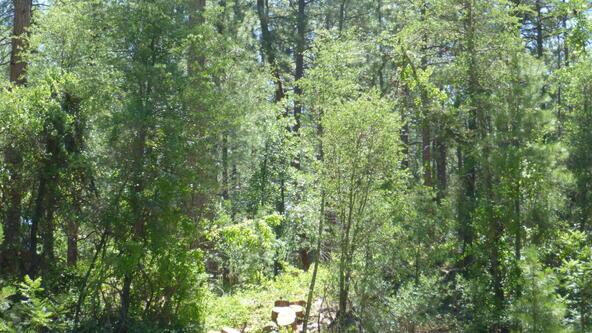 220 W. Zane Grey Cir., Christopher Creek, AZ 85541 Photo 34