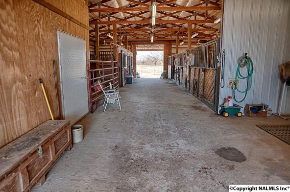 314 Neel School Rd., Danville, AL 35619 Photo 27