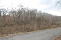 Home for sale: 0 Defeated Creek Rd., Centerville, TN 37033
