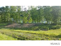 Home for sale: Lot #69 Valley Dr., Houston, AL 35572