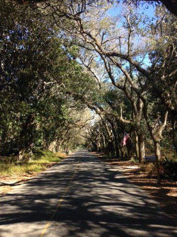 14251 Us Hwy. 98, Magnolia Springs, AL 36555 Photo 5