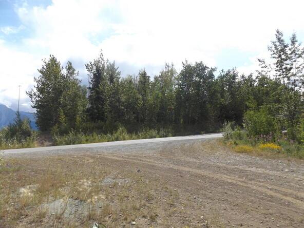 7917 E. Matanuska Spur Rd., Wasilla, AK 99645 Photo 30