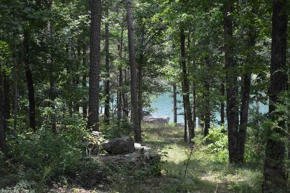399 Lizard Trail, Greers Ferry, AR 72067 Photo 36